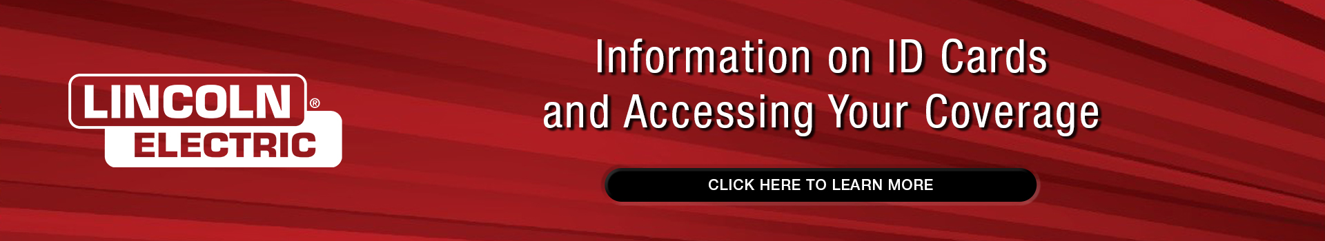 LE_WebsiteSlider_AccessIDCards_350